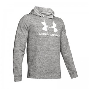 Bluza UNDER ARMOUR Terry Logo 1348520-112